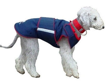 Winter Dog Coat - Blue Dog Jacket - Custom made Dog Raincoat - Waterproof / Fleece coat - custom made for your dog