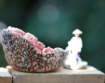 Rare Handmade Pot for Succulent Cactus Bonsai plants stoneware planter