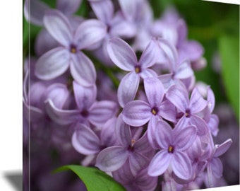 Lilacs, Flower Photography, Canvas Wrap, Home Decor, Wall Art, Nature Photography, Bedroom Decor, Sue Overson