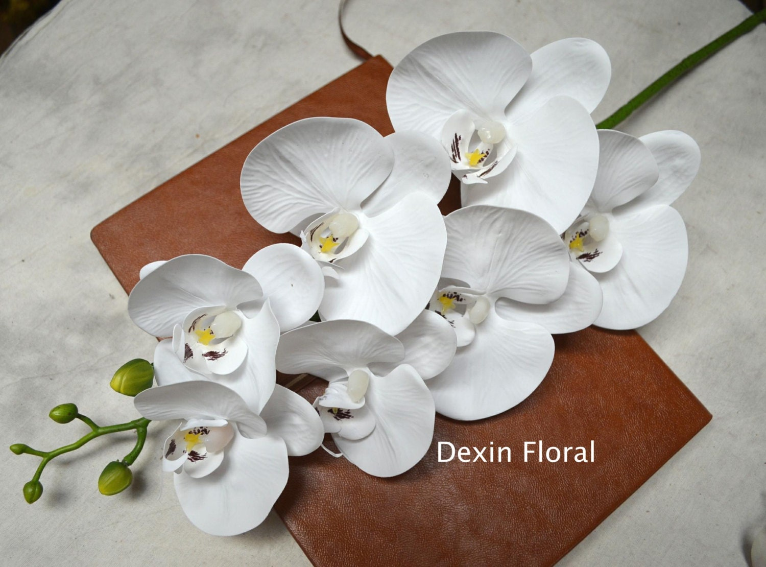 White Orchids Real Touch Flowers Phalaenopsis True by DexinFloral