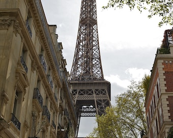 Paris Eiffel Tower Daytime with Buildings (20x27)