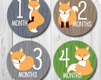 Fox Baby Month Stickers, woodland Monthly Stickers, Milestone Stickers for Baby, Photo Stickers Months 1-12