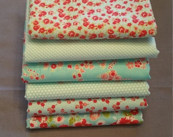 Little Ruby Half Yard Aqua Bundle by Bonnie and Camille