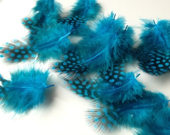Real feather chicken feathers, blue spotted 20 units (A 968)