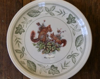 Vintage 1980's Staffordshire Tableware Red Squirrel Plate