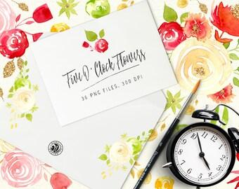 Five O'Clock Flowers