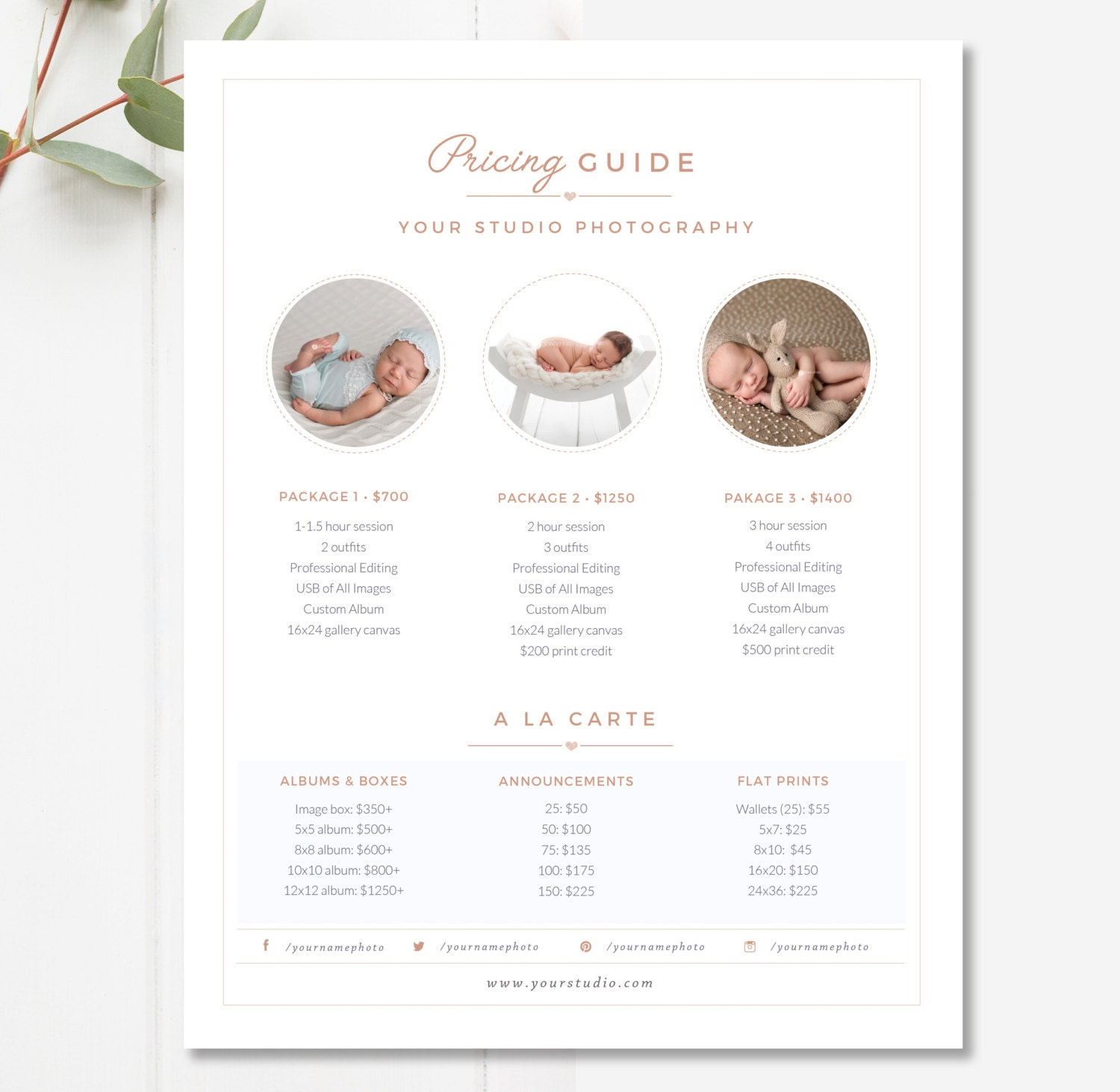 Pricing: Newborn Pricing Template Photography Pricing Guide Price