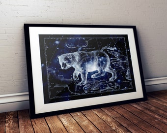 Ursa Major Constellation Metallic Print