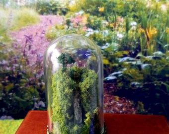 Terrarium Miniature, Cascade sous dôme en verre, Accessoire Décoration Maison de poupées Echelle 1/12