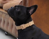 Dog collar CORK with rose gold colored hardware - handmade - pastel - collar and matching leash available