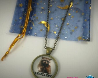 Evil Raccoon Meme Necklace - FREE SHIPPING - Internet Meme Geeky Jewelry - Excellent Raccoon Jewelry - Geek Gift