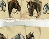 75% OFF SALE Noble horses - Digital Collage Sheet Digital Cards C169 Printable Download Image Tags Horse Retro Atc Cards ACEO Animals Cards