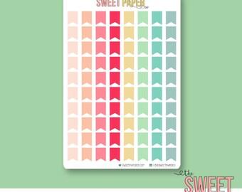 Mini Flag Planner Stickers | DREAM BIG