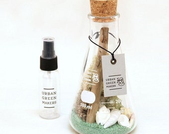 DIY Glass Chemistry Flask Terrarium Kit with Air Plant