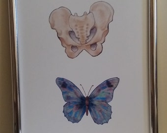 Anatomical art, pelvis and butterfly watercolour painting print