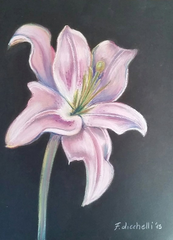 Pink lily illustration, OOAK,original drawing on black background - soft pastels on black paper - 21x30 cm./8,3x11,7 inc. Wall art,living.