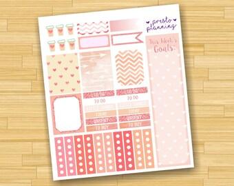 Peach Glitter Erin Condren Life Planner Theme Sticker Kit