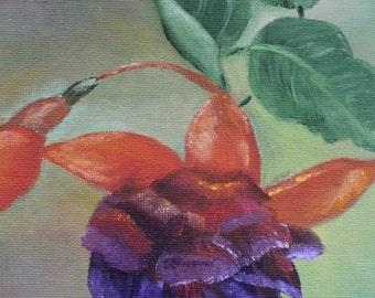 Fuschia Flower - 8 x 8 Oil Painting