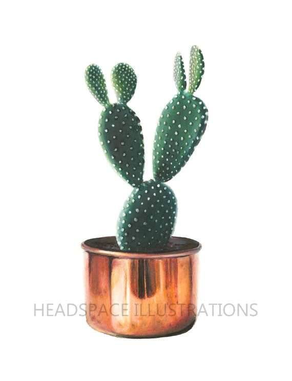 Cactus with copper planter colored pencil art print by - Kaktus zimmerpflanze ...