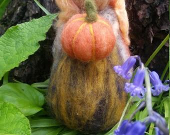 Pumpkin harvesting