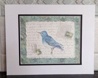 Blue Letter Bird