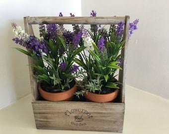 Lavender garden flower pot by daisy bumbles