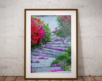 Nature Photo Print, Wall Art Canvas, Flower Wall Decor, Korea Garden Canvas, Nature Photo Print, Home Decor Ideas, Wall Art Canvas