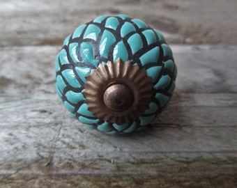 Duck Egg Blue  and Black Etched Drawer Knob