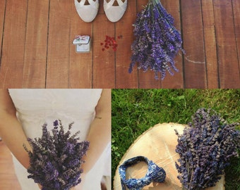 Bouquet of lavender Provence