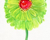 Zinnia watercolors paintings original, flower painting. small floral wall art, original watercolor painting of green zinnias 5 x 7 flower