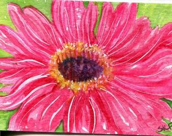 ACEO original Pink Gerbera Daisy watercolor, gerber Painting artwork ACEO Watercolor art card, flower painting, SharonFosterArt