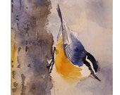 Nuthatch Bird Painting / Giclee PRINT of a Watercolor Painting / Animal Art small bird / Nature bird wildlife woodland creature