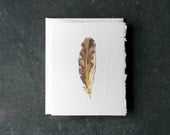 NORTHERN FLICKER FEATHER Card and Envelope, Blank Interior, Post-consumer Recycled Paper