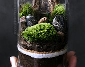 Miniature Landscape Terrarium Scene in Decorative Glass Jar