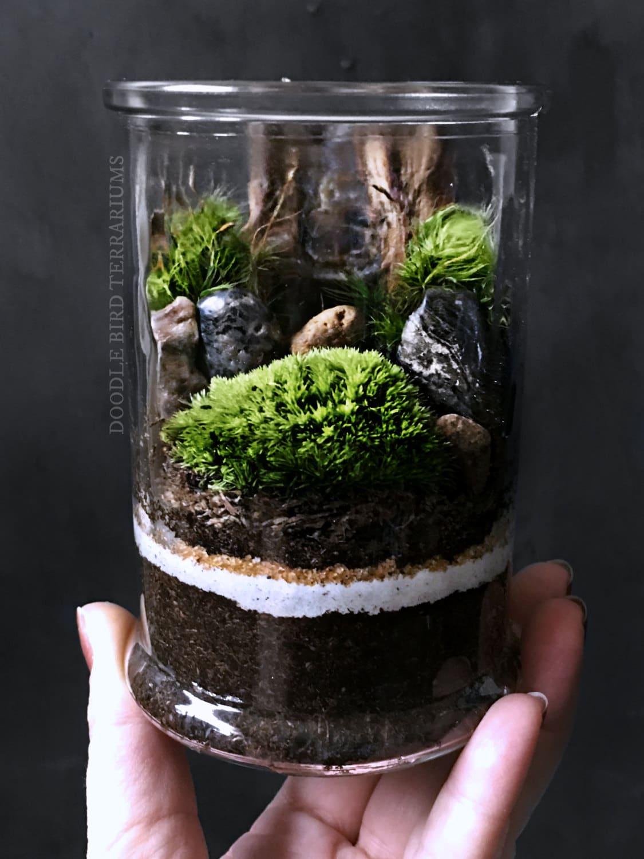 miniature landscape terrarium scene in decorative glass jar. Black Bedroom Furniture Sets. Home Design Ideas