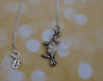 Friend of the Sea! Crab Silver Charm Necklace on Sterling Silver Chain