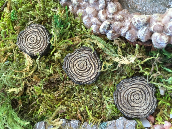 Tree Stump Stepping Stones, Set of 4, Fairy Garden Accessory, Miniature Gardening, Garden Decor, Toppers