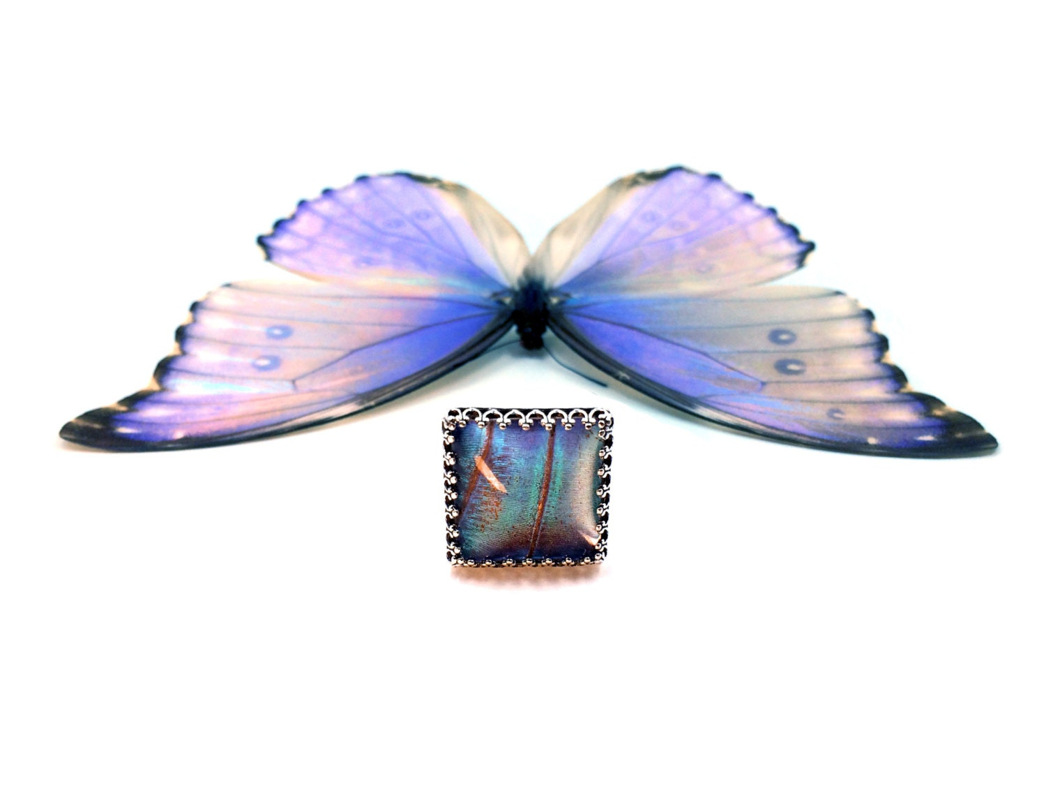 REAL butterfly wing ring Best selling shops Sterling silver