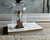 Glass Cloche with Vintage Wooden Knob - Letter D
