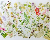 Flowers Paper pack, lucky dip paper ephemera lot, 50 pieces, Floral themed paper ephemera pack,  journal pack, paper flowers