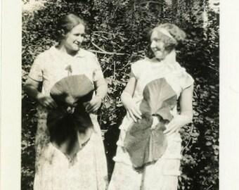 "Vintage Photo ""Big Leaf Holders"" Snapshot Antique Photo Old Black & White Photograph Found Paper Ephemera Vernacular - 57"