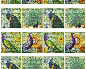 "Peacock Bird Feather Purple Blue Green Yellow Orange Red 4"", 3.5"", 2"" Squares Instant Download JPEG (16-12)"