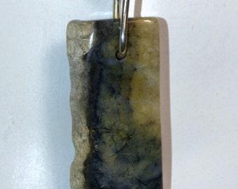 Petrified Coral Pendant.