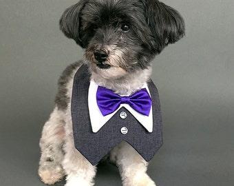 Charcoal Gray Dog Tuxedo with Your Choice of Bow Tie Color, Dog Wedding Tuxedo, Dog Tuxedo Bib