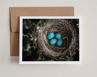 DIY Printable Notecards / Robin's Eggs / Blank Inside