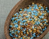 20g Czech seed beads Mixed turquoise beige seed beads MIX-9 Czech rocailles Seed bead soup 11/0 seed beads last