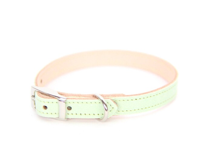 Cat or Small Dog Collar // Mint // Optional ID Tag