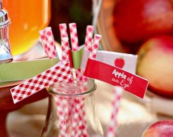 Apple//Apple of Our Eye//Burlap//Gingham//Polka Dot Printable Paper STRAW/CUPCAKE FLAGS by Marbella Printables