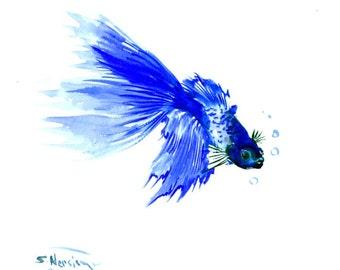 Blue Betta Fish 11 X 9 in