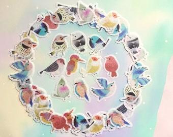 60 birds sticker rare bird super cute bird planner sticker fancy little birds flake sticker baby birds fairy tale bird decor label sticker